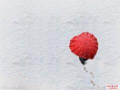 <b>等 雪</b>