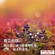 杨澜:我人生的所