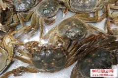 大闸蟹养殖技术?和